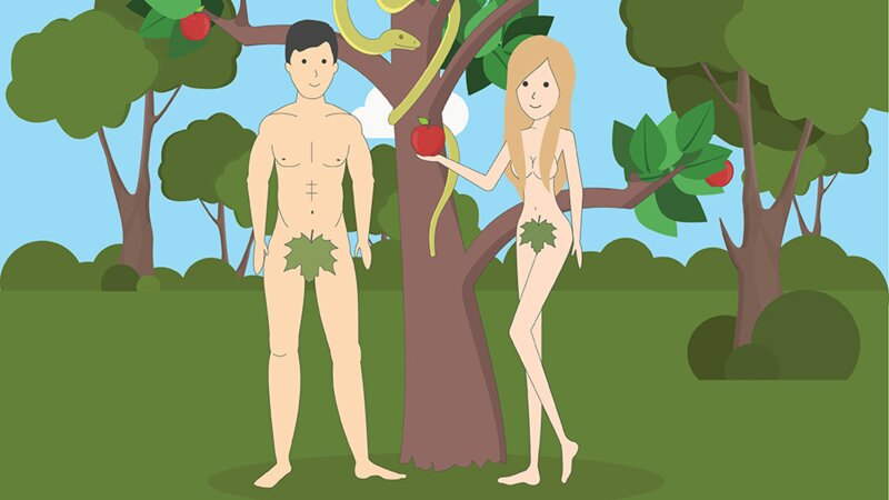 Que savez-vous vraiment de l'anatomie sexuelle ?