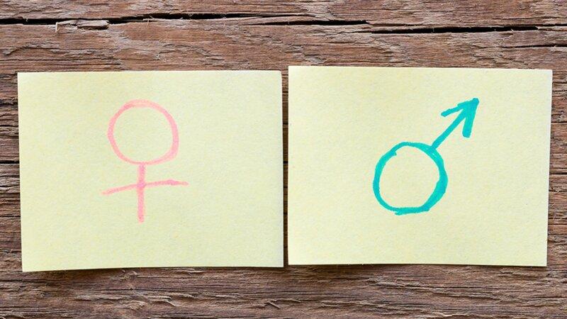 Féminin-masculin : êtes-vous incollable sur le genre des noms ?