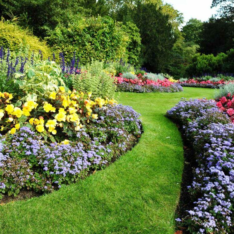 plantes pour jardin zen excellent jardin sec philippe raujol pour raliser un jardin sec il faut. Black Bedroom Furniture Sets. Home Design Ideas
